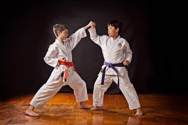 lợi ích của việc tự học võ thuật tại nhà