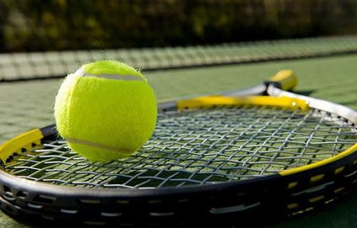 Bộ môn bóng Tennis